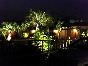ドリーム緑化のライティング